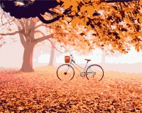HS 0264 Велосипед