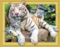 7DAR 256 Тигр с тигрятами