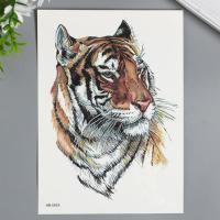 "Татуировка на тело цветная ""Амурский тигр"" 21х15 см   7040525"