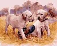 GX 24557 Два щенка