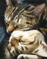 GX 29747 Кошачьи нежности
