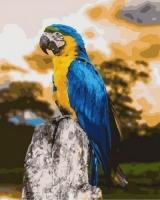 GX 31221 Попугай ара