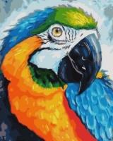 GX 33153 Яркий попугай