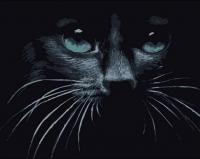 GX 39178 Черный кот
