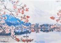 Х- 8072 Цветущая сакура