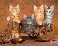 OK 10349 Котята на велосипеде*