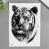"Татуировка на тело чёрная ""Тигр"" 21х15 см   7040514"