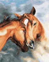 ZX 22629 Нежность лошадей